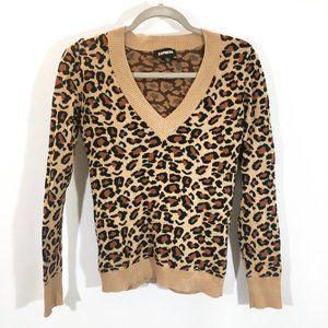Express Leopard Print Fitted Vneck Sweater